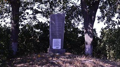 с. Яблочное Великописаревского р-на. Братская могила советских воинов на окраине села.