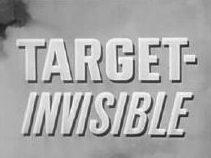 Невидимая цель