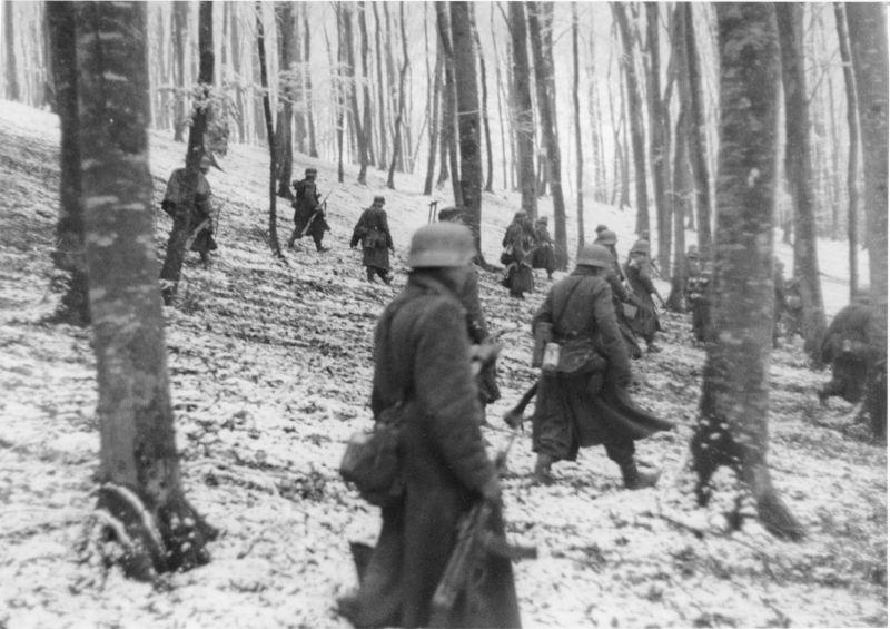 Немецкая пехота продвигается в лесной зоне в Ауфнахме. Декабрь 1944 г.