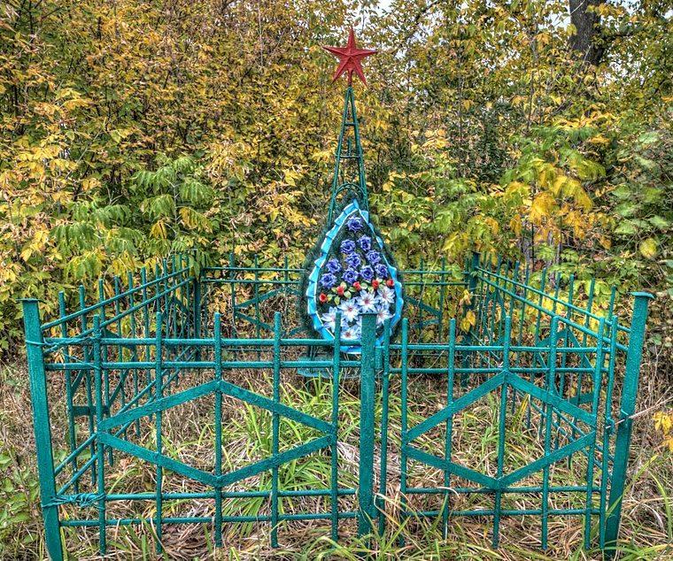 с. Коновалово Бурынского р-на. Братская могила советских воинов на кладбище.