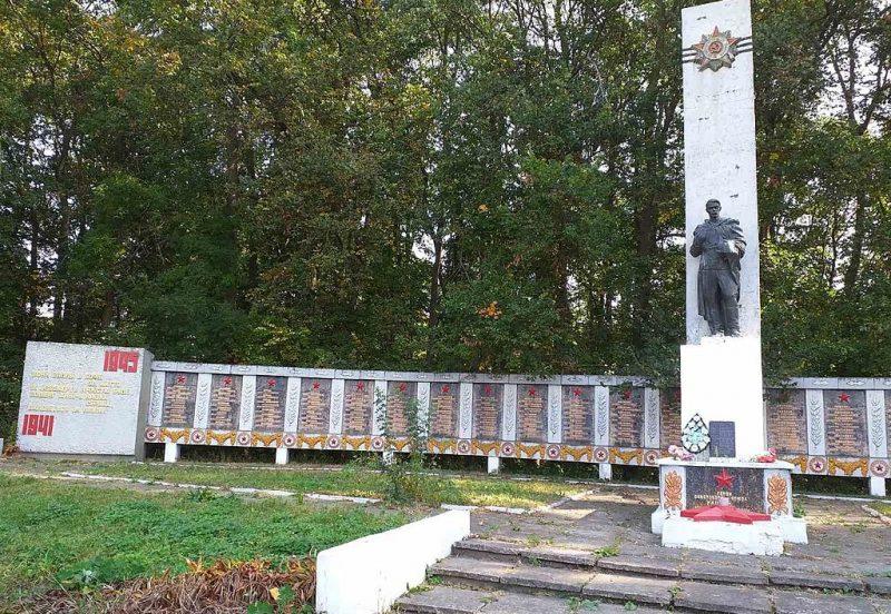 с. Снежки Бурынского р-на. Памятник, установленный на братской могиле советских воинов, среди которых похоронен Герой Советского Союза Глушко М.П.