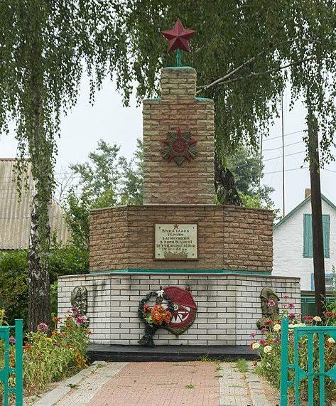 с. Брагинцы Варвинского р-на. Могила советского воина, погибшего при освобождении села в сентябре 1943 года и памятный знак 277 воинам-односельчанам, погибшим в годы войны.