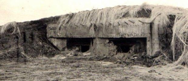 Захваченные ДОТы Мозырского укрепрайона. 1941 г.