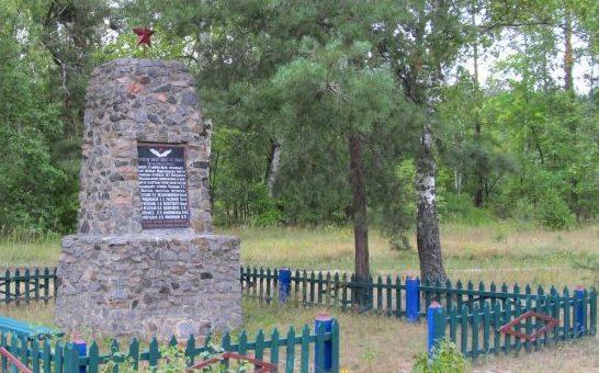 с. Кулики Лебединского р-на. Памятник партизанам.
