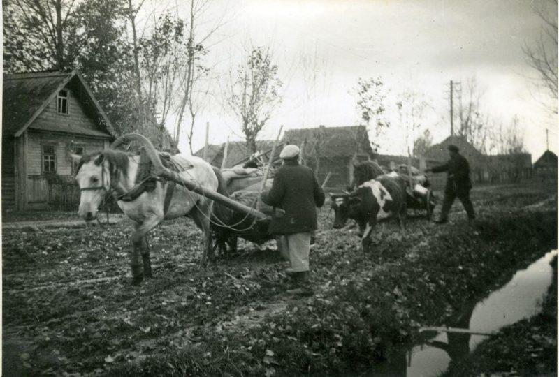 Жители покидают город. Сентябрь 1941 г.