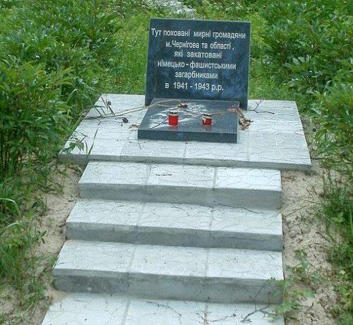 г. Чернигов. Мемориальный комплекс жертвам нацизма 1941-1943 годов в урочище Криволивщина, где погибло 1500 мирных жителей и 9000 военнопленных в 1941-1943 годах.