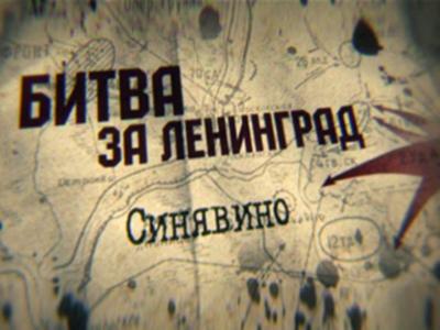 Живая история. Битва за Ленинград. Синявино