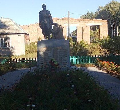 п. Краснополье. Памятник, установленный на братской могиле советских воинов.