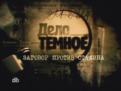 Дело темное. Заговор против Сталина