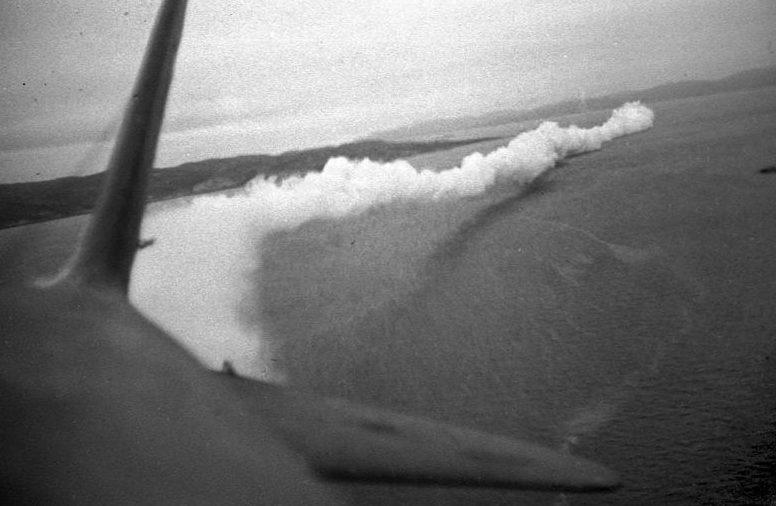 Самолет Ил-4 Северного флота ставит дымовую завесу над судами полярного конвоя. 1944 г.