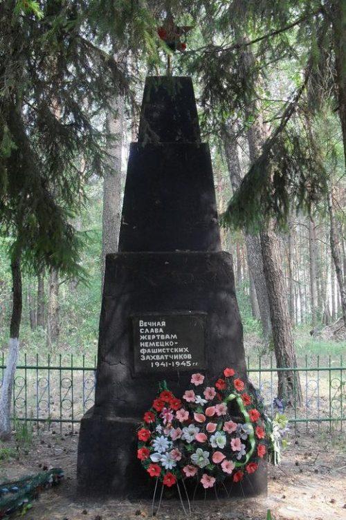 с. Кривоносовка Середино-Будского р-на. Обелиск в урочище Касеевка, установленный на братской могиле жертв фашизма.