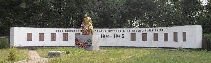 с. Кривоносовка Середино-Будского р-на. Памятник, установленный на братской могиле, в которой похоронено 49 советских воинов и памятный знак погибшим односельчанам.