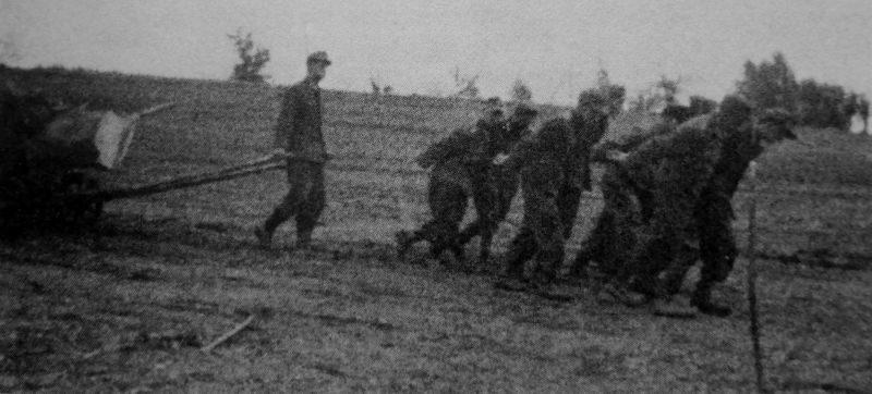 Немецкие военнопленные из лагеря в Елабуге тянут повозку с бревном к месту лесосплава на берегу Камы.1945 г.