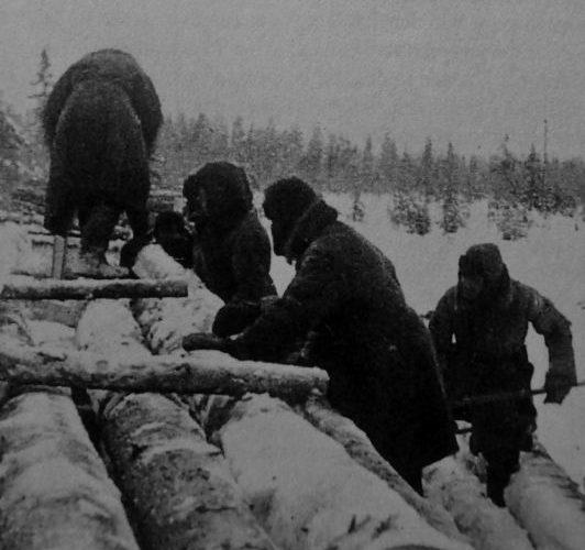 Немецкие военнопленные из Грязовецкого лагеря №150 работают на лесозаготовке на лесоучастке Пановка в Вологодской области. 1945 г.