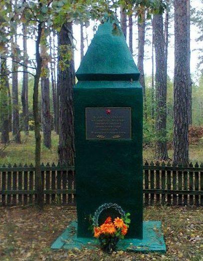 Репкинский р-н, 19 километр шоссе Репки-Радуль. Братская могила воинов, умерших от ран в 24-м полевом передвижном госпитале.
