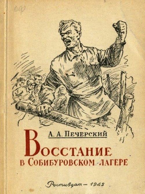 Книга А.А. Печерского.