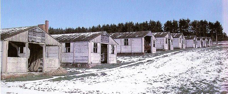 Бараки лагеря «Харперли 93», дожившие до наших дней.