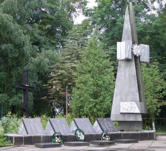 с. Анисов Черниговского р-на. Памятник, установленный в 1955 году на братской могиле воинов, погибших при освобождении села в сентябре 1943 года.