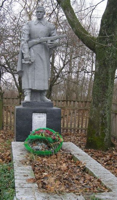 с. Антоновичи Черниговского р-на. Братская могила воинов, погибших при освобождении села.