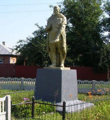 г. Носовка. Братская могила, в которой похоронено 10 неизвестных воинов, погибших при освобождении города в сентябре 1943 года.