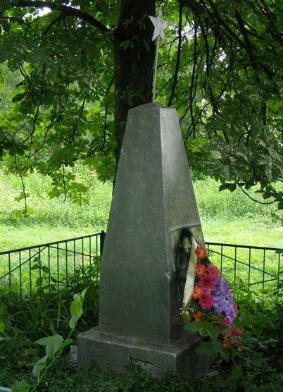 с. Лопатин Черниговского р-на. Братская могила воинов, погибших в боях за село.