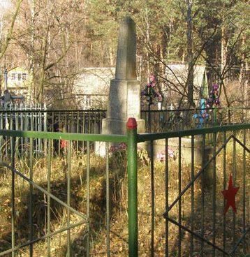 с. Пивцы Черниговского р-на. Братская могила советских воинов на кладбище.