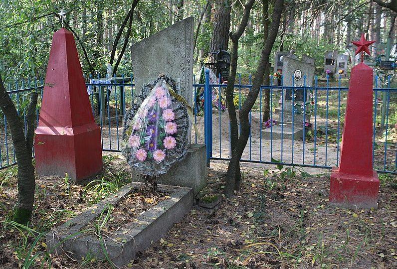 с. Рябцы Черниговского р-на. Братская могила на кладбище 7 воинов, погибших при освобождении села.