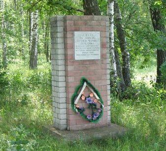с. Тереховка Черниговского р-на. Памятный знак воинам 62 стрелковой дивизии.