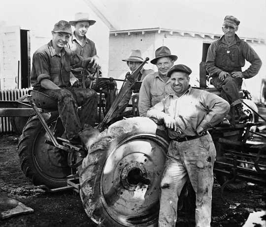 Немецкие военнопленные работают на ферме в Мурхеде.