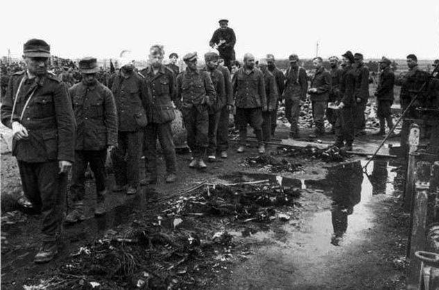 Немецкие военнопленные в концлагере Майданек.