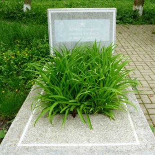 с. Пелагиада Шпаковского р-на. Братская могила советских воинов.