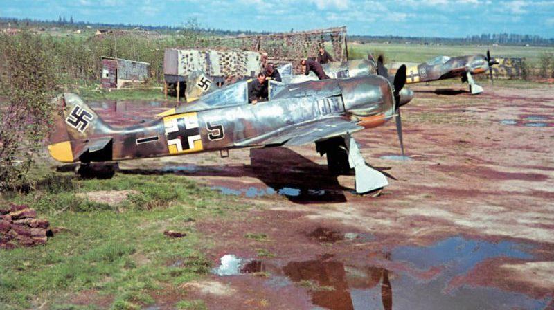 Истребители Фокке-Вульф Fw 190А-5 на аэродроме Сиверская. Июнь 1943 г.