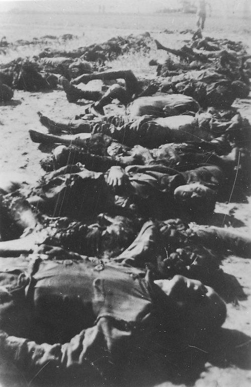 Трупы узников, найденные в лагере после освобождения.