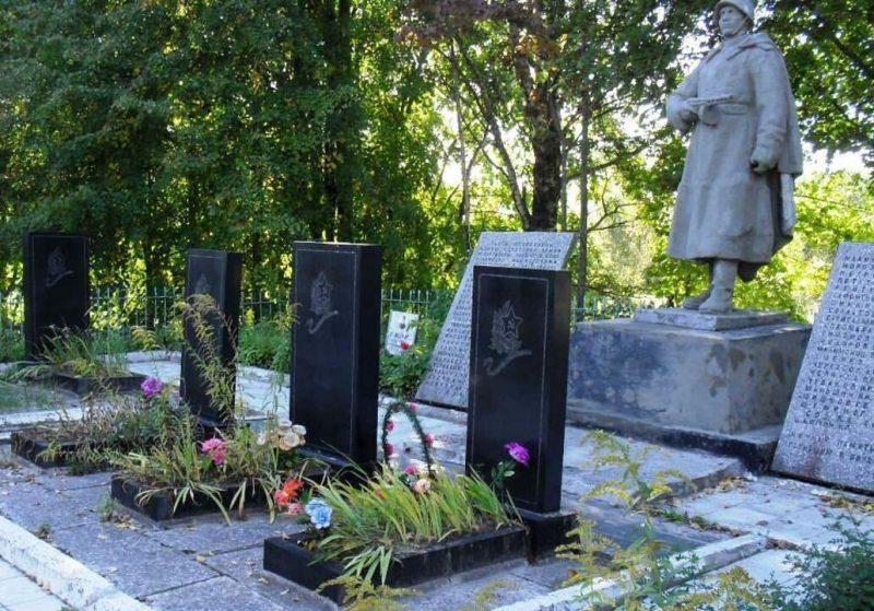 д. Дворцы Бежаницкого р-на. Памятник, установленный на братской могиле советских воинов, погибших в 1944 году.