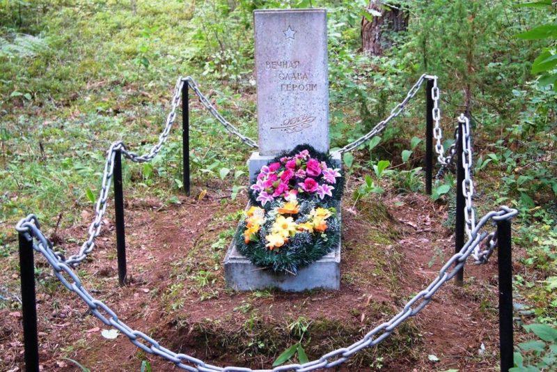 с. Пожеревицы Бежаницкого р-на. Могила неизвестного солдата.