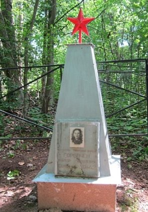 Великолукский р-н. Могила капитана Горбачева В.Я., командира 400 танкового батальона на острове озера Сокото.