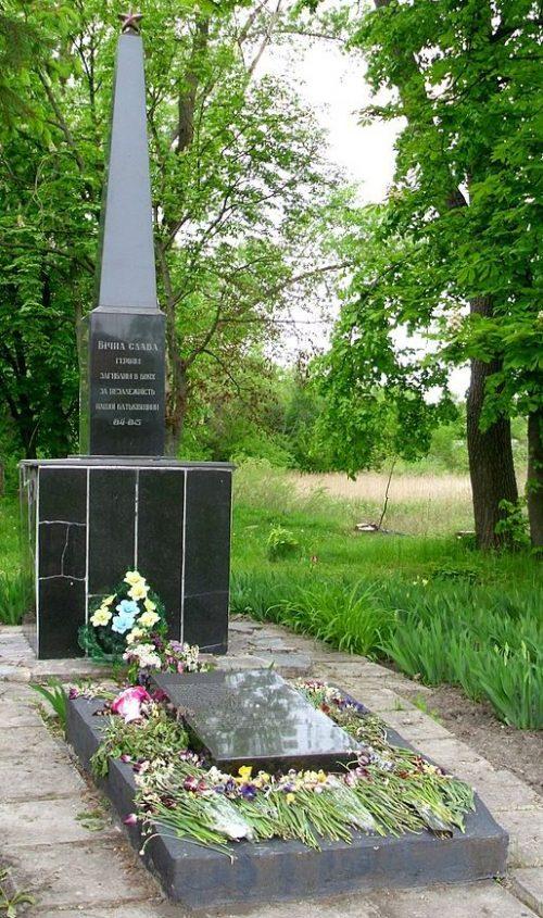 с. Бровки 1-е. Андрушевского р-на. Братская могила, в которой похоронено 22 советских воина.