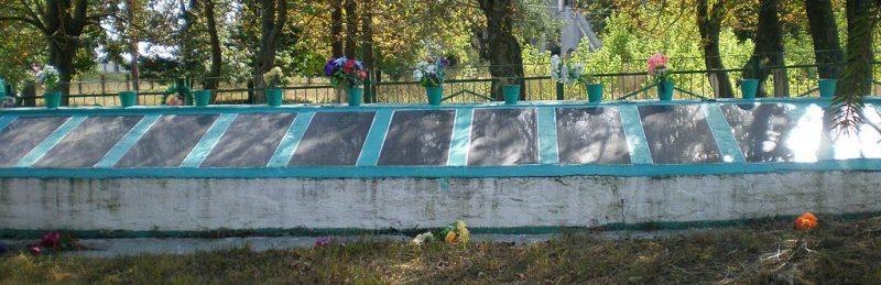 с. Ивница Андрушевского р-на. Военное кладбище из 39 братских могил советских воинов.