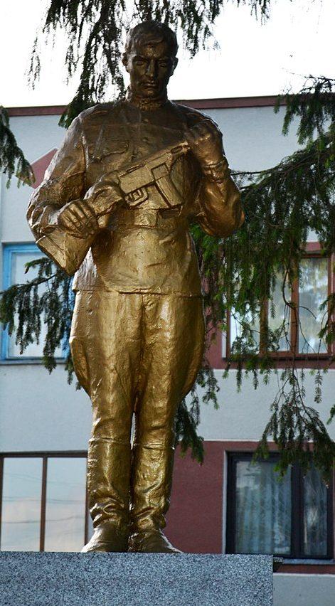 с. Левков Житомирского р-на. Братская могила 84 советских воинов.
