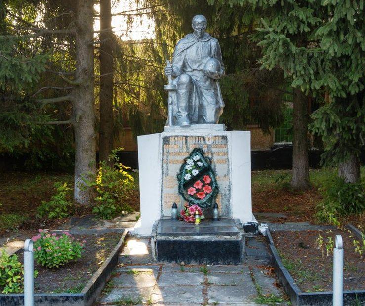 с. Сингуры Житомирского р-на. Памятник, установленный на братской могиле, в которой похоронено 23 советских воинов.