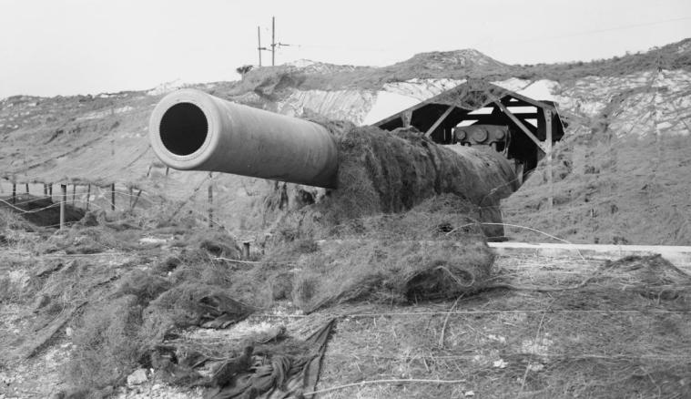 Позиция британского берегового орудия.