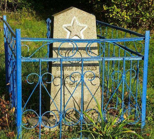 с. Соловьи Лугинского р-на. Братская могила 10 советских воинов.