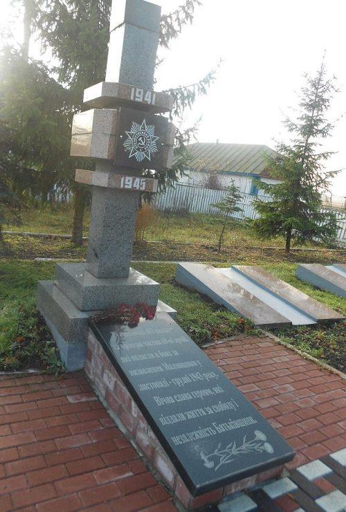 с. Ворсовка Малинского р-на. Братские могилы, в которых похоронено 678 советских воинов.