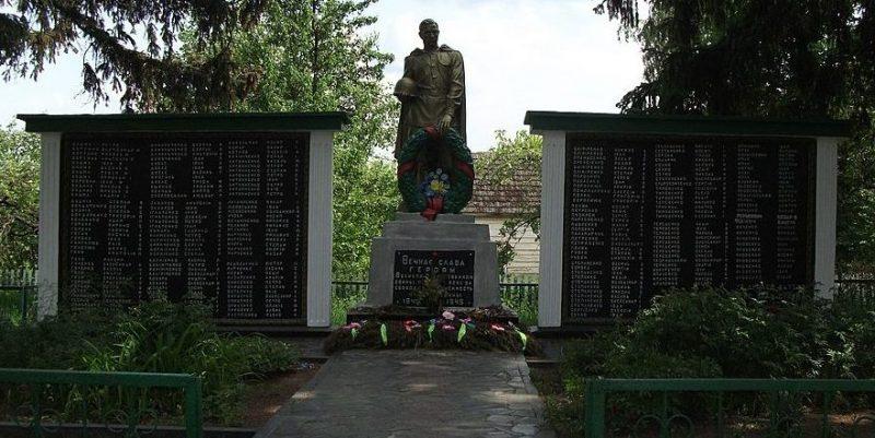 с. Новые Воробьи Малинского р-на. Памятник, установленный у 28 братских могил, в которых похоронено103 советских воинов и памятник воинам-односельчанам.